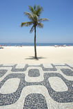 Playa Rio de Janeiro Boardwalk de Ipanema con la palmera Foto de archivo