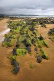 Playa rocosa Fotos de archivo libres de regalías