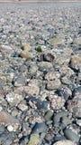 Playa rocosa Fotos de archivo