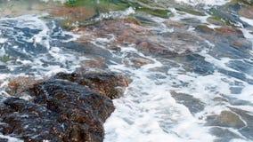 Playa rocosa de la belleza metrajes