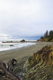 Playa rocosa de Washington Fotografía de archivo