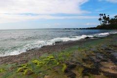Playa rocosa durante la bajamar (playa de la tortuga) Imagen de archivo libre de regalías