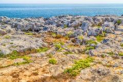 playa rocosa en el mar adriático Imágenes de archivo libres de regalías