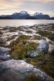 Playa rocosa, Kongshaugen, opinión sobre Hjorundfjorden, Sula Island Noruega 2016 fotos de archivo