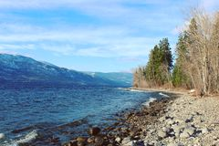 Playa rocosa y árboles a lo largo del lago Foto de archivo libre de regalías