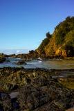 Playa rugosa con las rocas y los árboles en el puerto Macquarie Australia Imagen de archivo libre de regalías