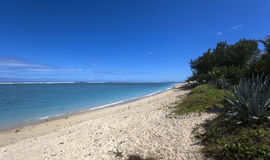 Playa salina del La, La Reunion Island, Francia Foto de archivo libre de regalías