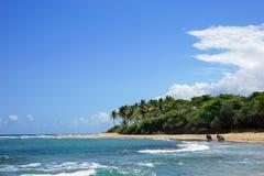 Playa salvaje con agua, la arena y las palmas claras de la turquesa Fotografía de archivo libre de regalías