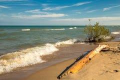 Playa salvaje Diversión del tiempo de verano Foto de archivo