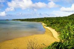 Playa salvaje durante la bajamar Imagen de archivo libre de regalías