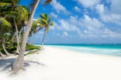 Playa salvaje en Tulum Imagen de archivo