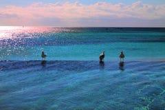Playa sin fin Foto de archivo libre de regalías