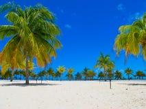 Playa Sirena (plage), Cayo largo, le Cuba images libres de droits