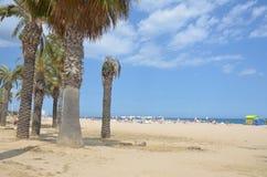 Playa soleada en brava de la costa imagen de archivo libre de regalías