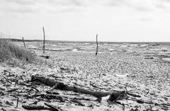 Playa soleada salvaje Fotos de archivo libres de regalías