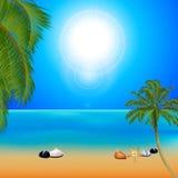 Playa soleada tropical con las palmeras Imagenes de archivo