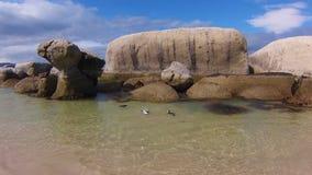 Playa Suráfrica de Boulder almacen de video
