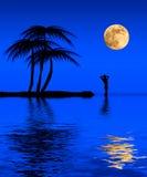 Playa tropical libre illustration