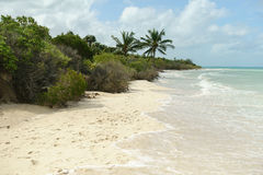 Playa tropical fotos de archivo