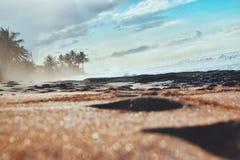 Playa, tropical Fotografía de archivo