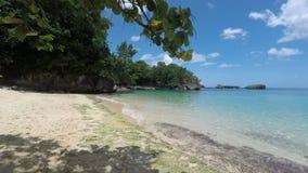 Playa tropical almacen de video
