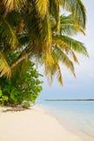Playa tropical asombrosa Imágenes de archivo libres de regalías