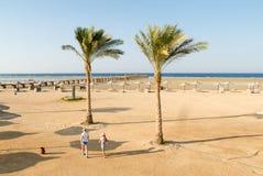 Playa tropical con la palma de coco Imágenes de archivo libres de regalías