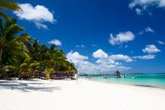 Playa tropical con las palmas Fotografía de archivo