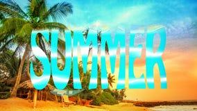 Playa tropical con las palmas Playa y mar tropical ilustración del vector