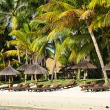 Playa tropical con las palmeras Fotografía de archivo
