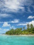 Playa tropical con las palmeras Foto de archivo libre de regalías