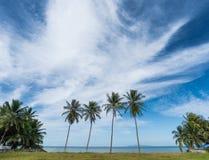 Playa tropical con las palmeras del coco KOH Samui, Tailandia imagen de archivo