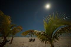 Playa tropical con las palmeras en la noche dos shelongas debajo de un cielo estrellado y de una luna radiante EE.UU. florida San foto de archivo