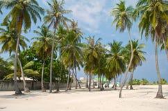 Playa tropical con las palmeras y el pueblo Foto de archivo