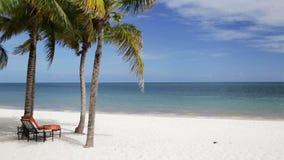 Playa tropical con las palmeras y el salón
