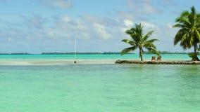 Playa tropical con las palmeras y los sunbeds metrajes