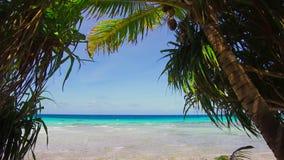 Playa tropical con los cocopalms en Polinesia francesa metrajes