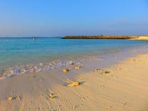Playa tropical con los corales Fotografía de archivo