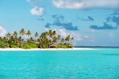 Playa tropical de la arena con las palmeras Imágenes de archivo libres de regalías