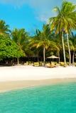 Playa tropical de la arena con las palmeras Vea en la isla de Maldives del aeroplano Imagen de archivo libre de regalías