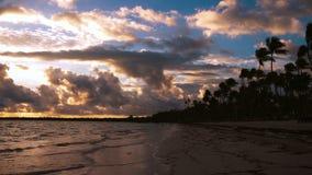 Playa tropical de la isla con la arena, la agua de mar de la turquesa y las palmeras blancas del coco Playa tropical con la palme almacen de video