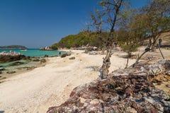 Playa tropical de la isla de Koh Larn en la ciudad de Pattaya, Chonburi Thailan Fotos de archivo
