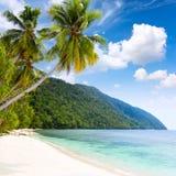 Playa tropical de la isla de Idillyc - mar caliente, palmeras, cielo azul foto de archivo
