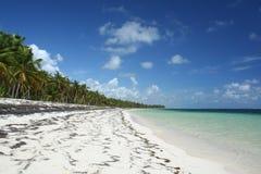 Playa tropical del Caribe Fotos de archivo