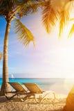 Playa tropical del mar del arte; centro turístico de las palmas de las vacaciones Foto de archivo libre de regalías