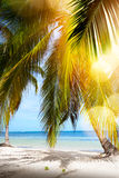 Playa tropical del verano; Fondo pacífico de las vacaciones imagenes de archivo