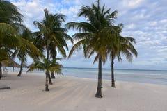 Playa tropical en Aruba con las palmeras Foto de archivo libre de regalías