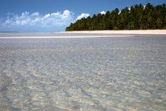 Playa tropical en el Brasil Fotos de archivo