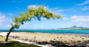 Playa tropical en Isla Mauricio imagenes de archivo