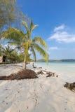 Playa tropical en Ko Rong con la onda del mar en la arena y la palmera Fotografía de archivo